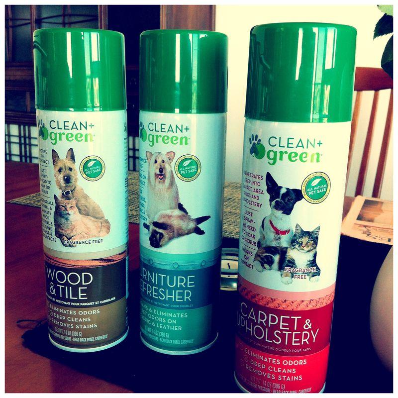Clean+Green