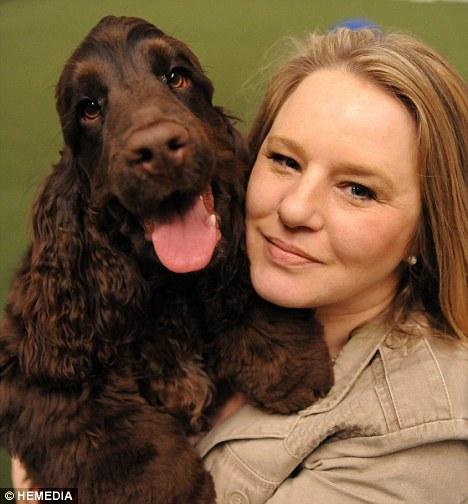 controle de diabetes com cães