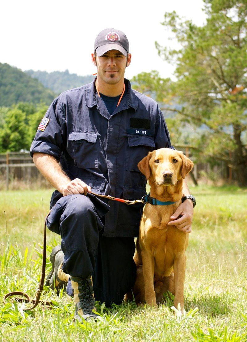 image from api.ning.com