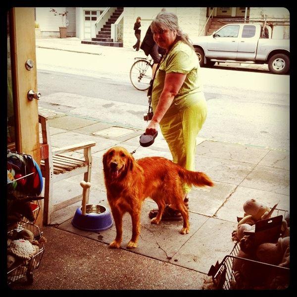 Dog Friendly Motels Jamestown Nd