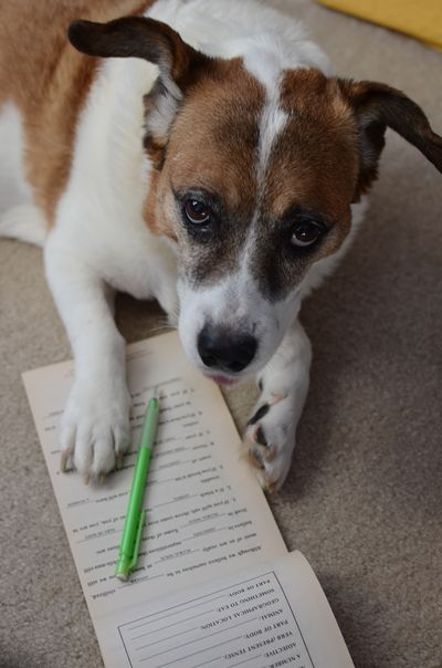 Bella keeps a list