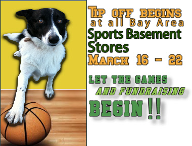 March_madness_dog