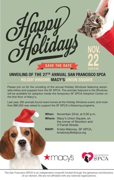 sfspca dog adoption