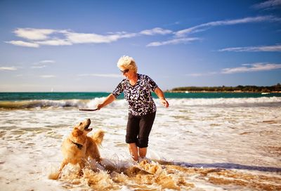 image from www.companionanimalpsychology.com