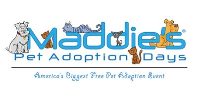 image from adopt.maddiesfund.org