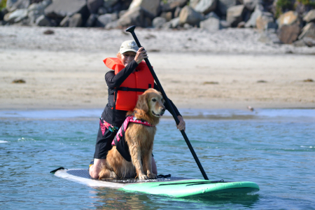 2015 Surf Dog Classes Linzie 2