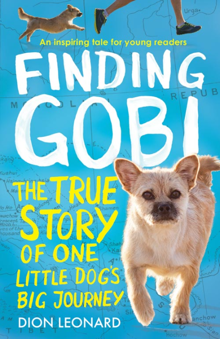 Young Reader Book Finding GOBI