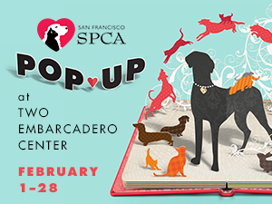 SPCA_pop_up_300x225_A2